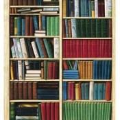 Bücherregale (81)